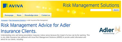 Screenshot of Adler Aviva Risk Management Services website